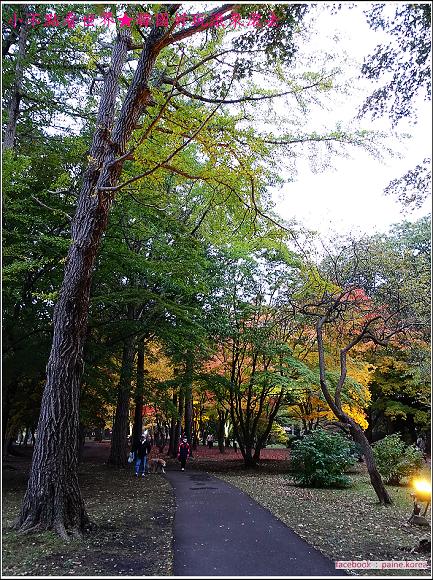 函館見晴公園 (3).JPG