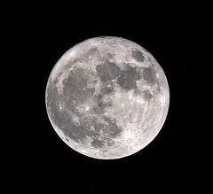 Super Luna (vic_206) Tags: moon luna canoneos60d canon300f4liscanon14xii