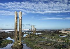 St Mary's Bay (loftylion9) Tags: storm sunrise gales northumberland bamburgh holyisland lindisfarne stmarys blyth amble stmaryslighthouse dunstanburghcastle embleton coquetisland blythbeach lowhauxley bambirghcastle