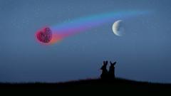 Meteor (Dragan*) Tags: sky moon rabbit bunny love nature grass animal silhouette night stars outdoors couple trail romantic moonlight meteor