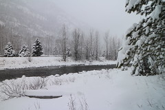 The Kettle River in Winter (tonywild241) Tags: winter mist mountain canada tree nature water creek river landscape countryside hill scenic foliage restarea mostviewed kootenayboundary bchighway33