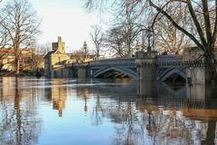 York - River Ouse in flood, December 2015 - 1 (nican45) Tags: york bridge reflection tree slr water canon river flooding december flood yorkshire sigma dslr 1770 ouse floods riverouse skeldergatebridge 2015 1770mm eos70d 1770mmf284dcmacro 27december2015 27122015