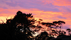 Spring weather (Sandy Austin) Tags: panasoniclumixdmcfz70 sandyaustin auckland massey westauckland newzealand northisland weather sunrise