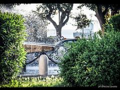 Fresh (NIKOZAR (Nicola Zaratta)) Tags: fontana acqua schizzi taranto cespugli nave city olympusomdem10 olympus olympusem10markii puglia rosadeiventi
