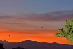Another autumn sunset (Nikos Roditakis) Tags: sunset autumn beautiful light night scenes cretan sunsets greek nikos roditakis tamron af sp 90mm f28 di vc usd
