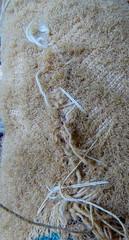 Macro Monday: Stitches (Hayseed52) Tags: macromonday stitches love horse toy threadbare plush memories thread