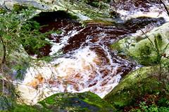 Strudelloch - Churn Hole (ivlys) Tags: bayern bayerischerwald bavarianforest spiegelau groseohe fluss river steinklamm stonegorge strudelloch churnhole wasser water landschaft landscape nature ivlys