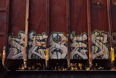 SEXES (TheGraffitiHunters) Tags: graffiti graff spray paint street art colorful freight train tracks benching benched sexes dumpster car