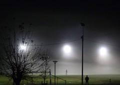 Mais o sont donc passs les joueurs ? (soleil bleu) Tags: football entrainement brouillard nuit stade