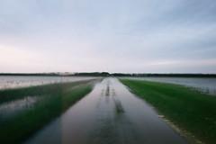 untitled (Lino Petito) Tags: 2014 puglia fields water double exposure doubleexposure sandonaci paduli campagna nikond610