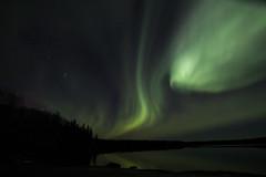 Aurora over Mid Lake (She Likes Odd) Tags: aurora auroraborealis northernlights auroralarc geomagneticstorm spaceweather tokina1116mm tokina thompson manitoba midlake canon60d canoneos60d canonphotography nightsky nightphotography astrophotography