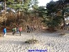 "2016-11-30       Lange-Duinen    Tocht 25 Km   (18) • <a style=""font-size:0.8em;"" href=""http://www.flickr.com/photos/118469228@N03/31198719482/"" target=""_blank"">View on Flickr</a>"