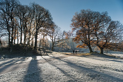 A Winter Walk (John Ormerod) Tags: winter trees light shadows walk people cold frosty morning landscape photography photograph nikon cumbria uk england