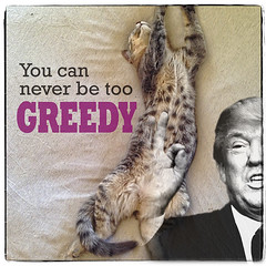American Icons: Trumphole (mdt1960) Tags: trump politics pussy greed quotes gop patriot assclown grabthembythepussy collage