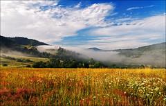Lato w Beskidach (witoldp) Tags: beskidy ywiecki beskid rajcza milwka dolina soy mucu meadows ka mist mga poland landscape