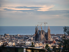 2016-11-24-Barselona-ADS_4083.jpg (Mandir Prem) Tags: 2016 barselona europe gaudí outdoor people places spain trip backpakers city gothic nature travel барселона испания гауди готика осень