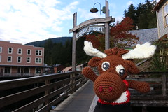 IMG_3693 (The Crochet Crowd) Tags: crochetmoose amigurumi moose crochet doll alaska britishcolumbia thecrochetcrowd michaelsellick jeannesteinhilber danielzondervan crochetcruise mooseontheloose
