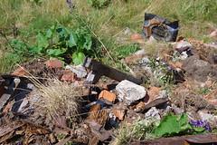 Drrenstein (Harald Reichmann) Tags: sommer ruine drrenstein doline teststation kltepol grnloch