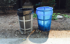 Chicago, 2015 (gregorywass) Tags: blue summer chicago trash bag garbage can recycling 2015