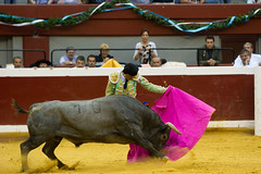 DSC_9629.jpg (josi unanue) Tags: animal blood spain bull arena bullfighter sansebastian esp toro traje asta sangre espada bullring unanue guipuzcoa matador torero tauromaquia sufrimiento cuerno ureña banderilla banderilero