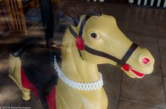 SchmancyPony (Zzzzt!Zzzzt!) Tags: window necklace pearls pony fancy rehobothbeach carouselhorse