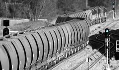 8205-8248-8244 (Teutonic01) Tags: sandgate 8205 coaltrain pacificnational 8244 8248 huntervalleycoal