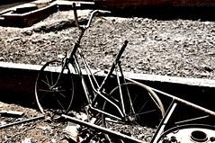"Childhood (""CGGS Photography"" on Facebook) Tags: españa field bike rural garden photography spain nikon rustic bicicleta campo fotografia infancia espagne chidhood nikond90 huert"