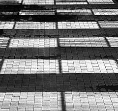 Rejillas proyectadas   Projected grids   Griglie proiettate 3 (Raul Jaso) Tags: shadow blackandwhite bw byn blancoynegro geometric lines lumix blackwhite mexicocity df pattern shadows patterns ombra sombra shades ombre line panasonic shade rectangle sombras ciudaddemexico linea biancoenero patron mexicodf rectangles lineas geometria patrones linee geometricfigures figurasgeometricas rectangulo sombraproyectada dmcfh8 panasonicdmcfh8 rauljaso rauljasofotografia rauljasophotography