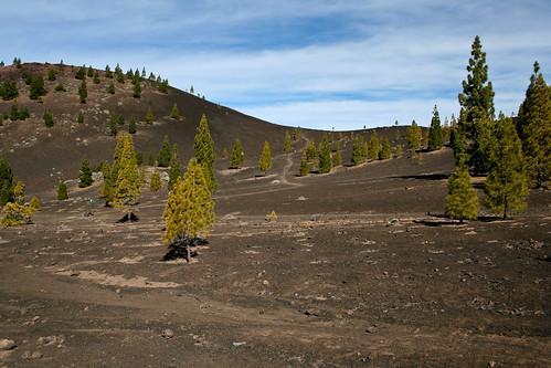 2007 Montana Reventada-26