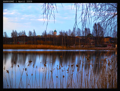 lovely reeds .... (harrypwt) Tags: reflection nature helsinki coastal munkkiniemi 1454 e520 harrypwt