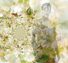 A Whiter Shade (virtually_supine popping in and out) Tags: woman white floral photomanipulation creative monotone layers abstraction fractals digitalartwork photoshopelements9 paintnet405 kreativepeopletreatthis97 sourceimageshadesofautumnbyabstractartangel