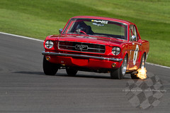 'ByBox' Historic Touring Car Championship Ford Mustang (Warren Briggs) (motorsportimagesbyghp) Tags: championship fordmustang motorracing motorsport brandshatch historicsportscarclub hscc historictouringcar bybox warrenbriggs