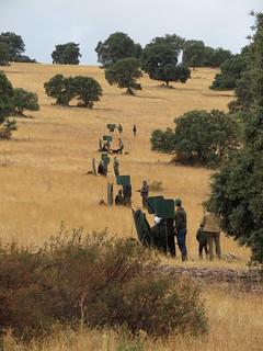 Spain Ibex Hunt & Driven Partridge Hunts 28