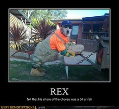 REX (Chikkenburger) Tags: posters memes demotivational cheezburger workharder memebase verydemotivational notsmarter chikkenburger