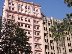 (Liz Zmuda) Tags: pink trees brazil people brasil palmeiras porto ap alegre rs