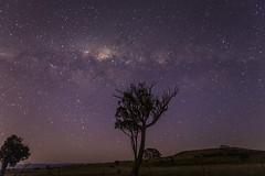 Milky way (joshmitterfellner) Tags: trees sky stars landscape purple astrophotography canberra milkyway
