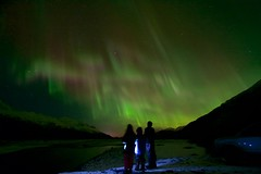 Aurora Gazing (wolphcry) Tags: alaska aurora valdez northernlights thompsonpass