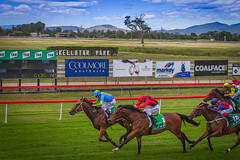 Day at the Races (Thanks For Your Kind Support) Tags: park horses track australia racing jockey nsw horseracing 1855mm picturesque rider circuit huntervalley hunterregion kevinwalker musswellbrook canon1100d skellatar