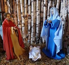 Weihnachtskrippe in der Kirche in Zingsheim (mama knipst!) Tags: church germany deutschland kirche eifel glise weihnachtskrippe zingsheim