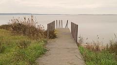 (Maurizio Aresu) Tags: sardegna landscape pier pond sardinia lagoon wharf laguna paesaggio cabras pontile oristano stagno beautyiseverywhere maurizioaresu