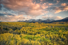 Kebler Pass (Roving Vagabond) Tags: kebler pass crested butte colorado co fall autumn color gold aspen leaves landscape clouds sunset mountains serene outdoor mountain grove trees cloud foilage foliage sky peak hill