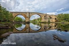 Puente viejo Color Efex (Chispie) Tags: nikon d750 ourense