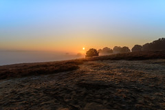 Here comes the sun (Jantje1972) Tags: posbank nature natuur netherlands nederland hogeveluwe sunrise zonsopkomst