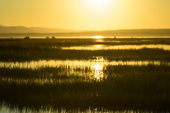 douglastown 1 (photoRSV) Tags: gaspesie sunset douglastown quebec soleil