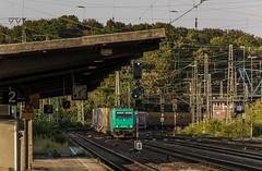 1637_2016_09_23_Köln_West_XRAIL_6185_607_mit_Containerzug_Köln_Süd (ruhrpott.sprinter) Tags: ruhrpott sprinter deutschland germany nrw ruhrgebiet gelsenkirchen lokomotive locomotives eisenbahn railroad zug train rail reisezug passenger güter cargo freight fret diesel ellok kölnwest als db mrcedispolok nxg nationalexpress lbl locon nrail pcw rhc sbbc siemens sncb vtgd es64p001 es64f4 0272 127 146 155 185 186 189 260 275 408 482 620 1261 1275 6127 6146 6189 2275 eurosprinter gravita dosto chemion schienen walzzeichen outdoor logo natur graffiti