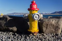 Fire hydrant (michael_hamburg69) Tags: reykjavk iceland island reykjavkurborg hfuborgarsvi hydrant firehydrant kennedyvalve elmirany bluesky blue yellow red weather sunshine