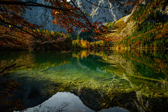 Textures Joining Through Elements (fred kottan) Tags: 21mm nikon goldenoctober mirror water mountains obersterreich lake hintererlangbathsee trees upperaustria milvus colors spiegelung zeiss reflection autumn d810 landscape austria obersterreich