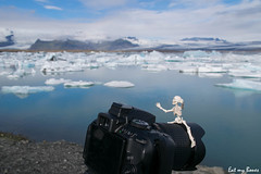 Eat my Bones (Pose Skeleton) Iceland 2016 - 032 (EatMyBones) Tags: bones iceberg iceland islande miniature nature poseskeleton rement skeleton toy travel