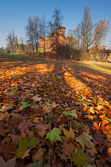 Light and shade in a leafy glade (snowyturner) Tags: italy turin po park leaves autumn morning 10mm castle trees valentino