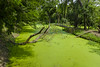 green (arcibald) Tags: green queensirikit rotfai chatuchak park waterway canal bangkok thailand